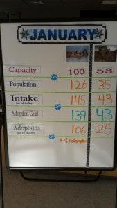 Harbor Shelter Gaffey Street January Stats